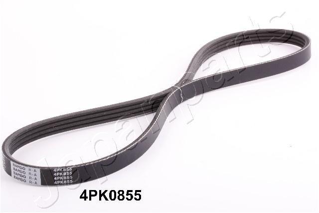 DV-4PK0855 JAPANPARTS Rippenanzahl: 4, Länge: 855mm Keilrippenriemen DV-4PK0855 günstig kaufen