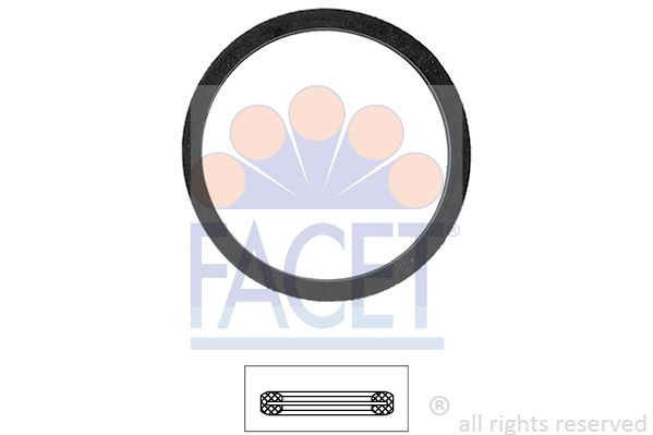 FACET: Original Dichtung Thermostat 7.9568 ()