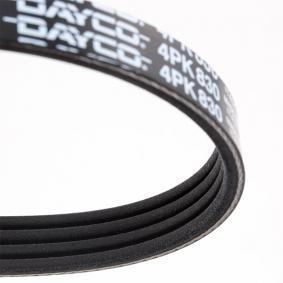 4PK830 Keilrippenriemen DAYCO - Markenprodukte billig