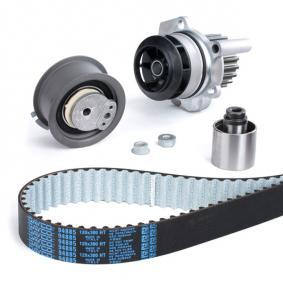 KTBWP2961 Water Pump & Timing Belt Set DAYCO - Experience and discount prices