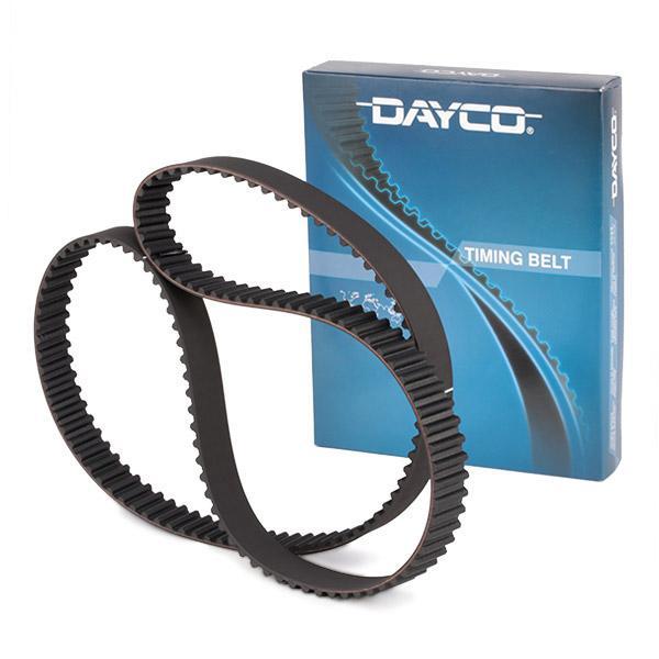 Dayco 941018 Correa dentada