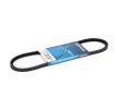 Correa trapezoidal DAYCO 10A0735C Opiniones
