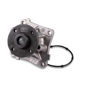 buy and replace Water Pump HEPU P131