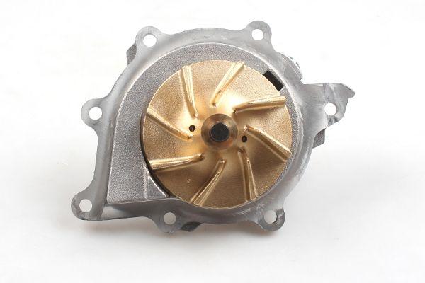 P807 Kühlwasserpumpe HEPU - Markenprodukte billig