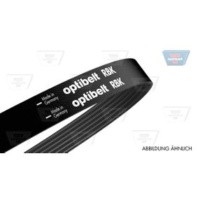 6PK2117 OPTIBELT CST11 Ribbantal: 6, L: 2115mm Flerspårsrem 6 PK 2115 köp lågt pris