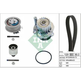 530 0201 32 Water Pump & Timing Belt Set INA - Cheap brand products