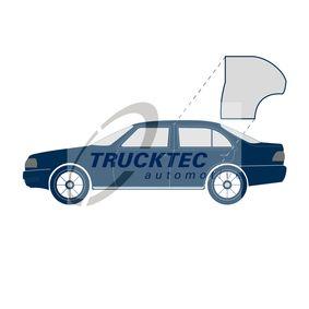 02.53.051 TRUCKTEC AUTOMOTIVE Türdichtung 02.53.051 günstig kaufen