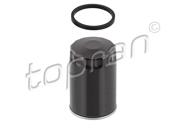 100 653 Filter TOPRAN - Markenprodukte billig