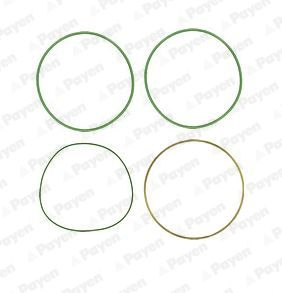 HT018 PAYEN O-Ring Set, cylinder sleeve: buy inexpensively