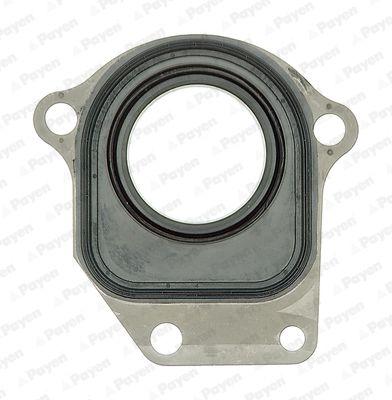 Buy Shaft seal, intermediate shaft PAYEN NC044