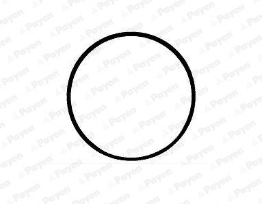LB802 PAYEN O-Ring Set, cylinder sleeve: buy inexpensively