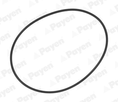 PA709 PAYEN O-ringssats, cylinderfoder: köp dem billigt