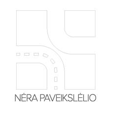 R1111V Stabdžių diskas LPR - Sumažintų kainų patirtis