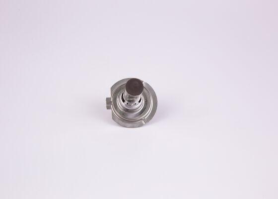 1 987 301 012 Glühlampe, Fernscheinwerfer BOSCH in Original Qualität