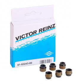 buy and replace Seal Set, valve stem REINZ 12-31306-13