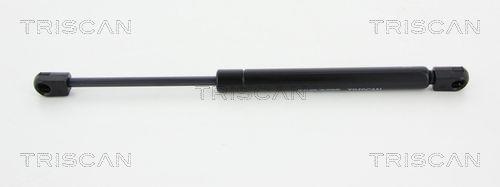Original MERCEDES-BENZ Tailgate gas struts 8710 23229