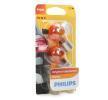Glühlampe, Blinkleuchte 12496NAB2 — aktuelle Top OE 7703097178 Ersatzteile-Angebote
