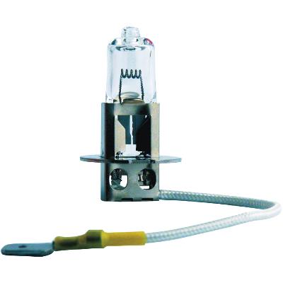 13336MDC1 PHILIPS Glühlampe, Fernscheinwerfer für RENAULT TRUCKS online bestellen