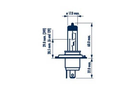48898 NARVA Glühlampe, Fernscheinwerfer für MAN online bestellen