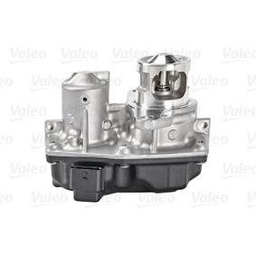 700449 AGR-Ventil VALEO Erfahrung