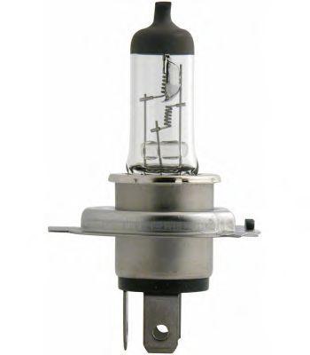 13342MDC1 PHILIPS Glühlampe, Fernscheinwerfer für MAN online bestellen