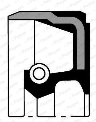 NC006 PAYEN Ø: 48,00mm, Inner Diameter: 35,00mm, MVQ (Silicone Elastomer) Shaft Seal, camshaft NC006 cheap