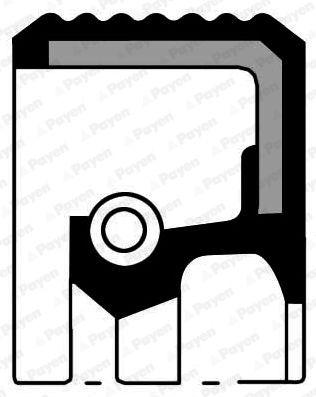 PAYEN: Original Nockenwellendichtung NA5035 (Ø: 47,00mm, Innendurchmesser: 27,00mm, FPM (Fluor-Kautschuk))