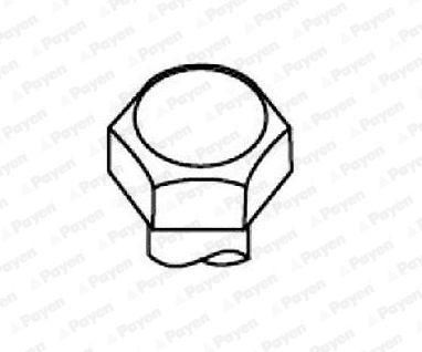 PAYEN: Original Zylinderschrauben HBS104 (Länge: 100,00mm, Gewindemaß: M10 x 1.50)