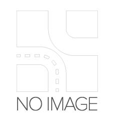 Volkswagen KOMBI 2013 Belts, chains, rollers DAYCO KTBWP2964: