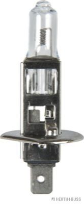 89901093 HERTH+BUSS ELPARTS Glühlampe, Fernscheinwerfer für MAN online bestellen