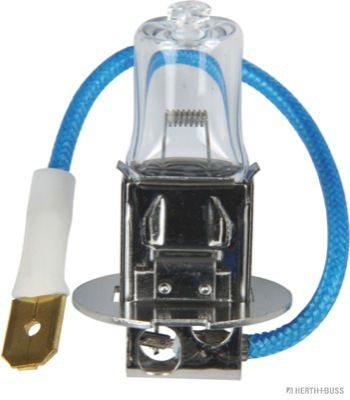 Headlight bulb 89901097 HERTH+BUSS ELPARTS — only new parts
