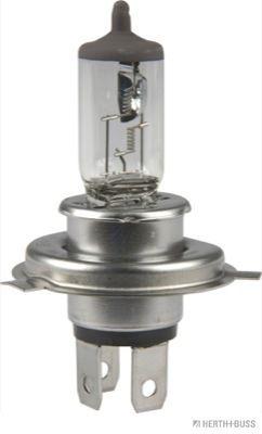 89901098 HERTH+BUSS ELPARTS Glühlampe, Fernscheinwerfer für MAN online bestellen