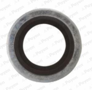 Buy original Sump plug PAYEN KG5012