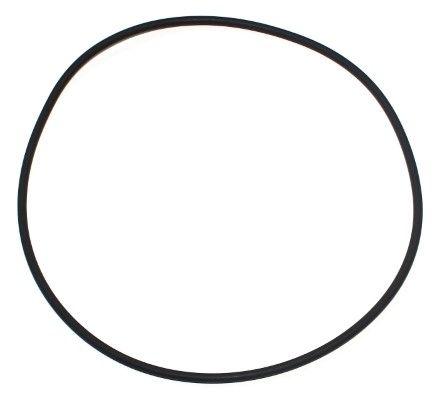 ELRING O-Ring, cylinder liner for SCANIA - item number: 743.401