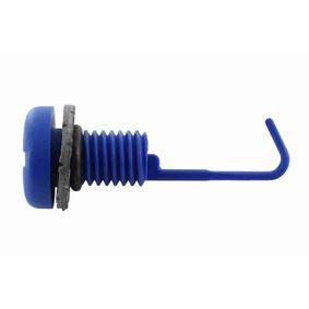 Įsigyti ir pakeisti varžtas, radiatoriaus dangtelis VAICO V20-1373