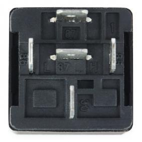 0986AH0602 Relay, main current BOSCH - Experience and discount prices