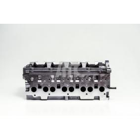 908818 Zylinderkopf AMC Erfahrung