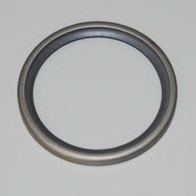 120213 WAHLER Dichtung, Thermostat 120213 günstig kaufen