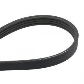 4PK803 Rebrasti jermen GATES - poceni izdelkov blagovnih znamk