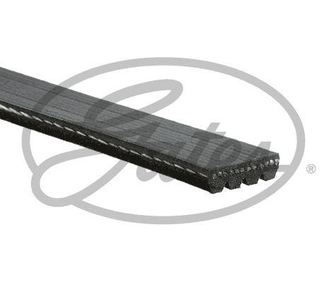 4PK855 Keilrippenriemen GATES in Original Qualität