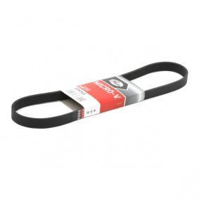 GATES 6PK955 V-Ribbed Belt