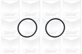 GRAF | Wasserpumpe PA579