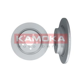 1031098 KAMOKA Voll, beschichtet Ø: 300mm, Lochanzahl: 5, Bremsscheibendicke: 12mm Bremsscheibe 1031098 günstig kaufen