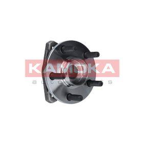 buy and replace Wheel Bearing Kit KAMOKA 5500055