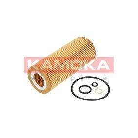 F109601 Filter KAMOKA Erfahrung