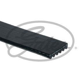 6PK1353 Rebrasti jermen GATES - poceni izdelkov blagovnih znamk