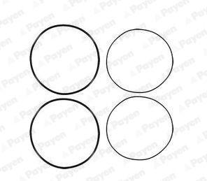 HL5191 PAYEN O-Ring Set, cylinder sleeve: buy inexpensively