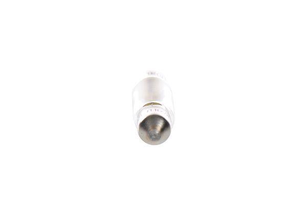 1987302810 Glühlampe, Kennzeichenleuchte BOSCH C5W - Große Auswahl - stark reduziert