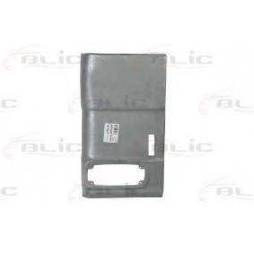 6504-03-3501683P BLIC Heckwand 6504-03-3501683P günstig kaufen