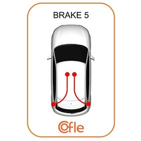 10.6044 Vajer, parkeringsbroms COFLE Test